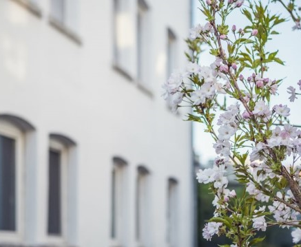 Was macht den Stuttgarter Immobilienmarkt so besonders